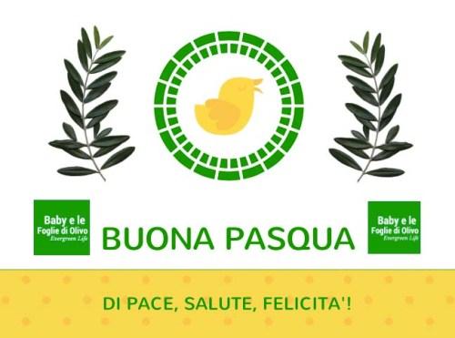 pasqua e olivo
